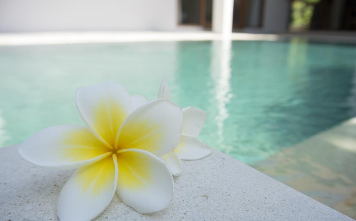 květina u bazénu